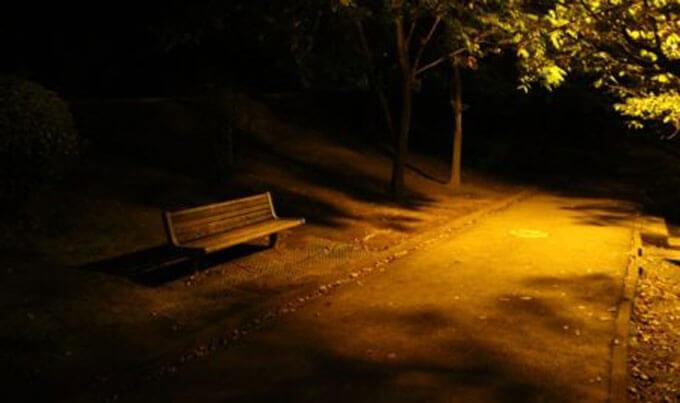 野外セックス公園